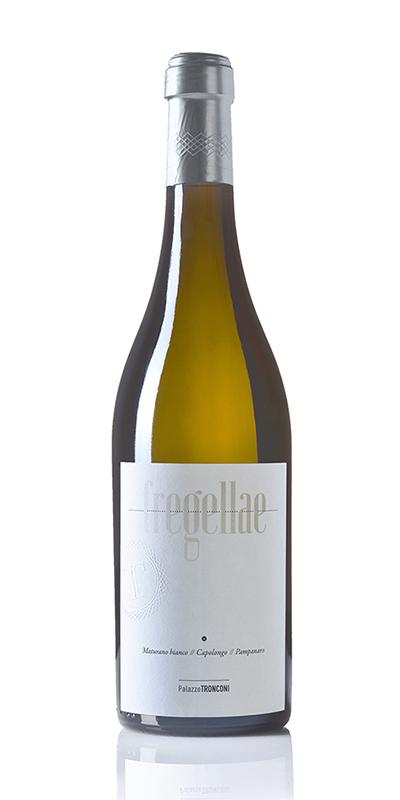 Fregellae 2016