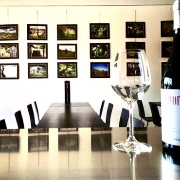 Photographing A Vineyard – Exhibition by Marco Reali