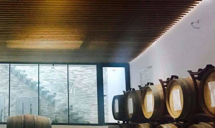 Biodynamic Wine Tour at an Eco Winery In Italy For The Conscious Wine Lover
